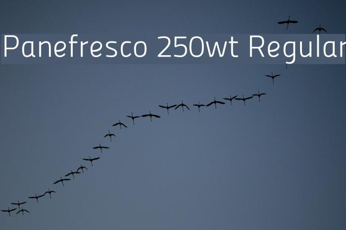 Panefresco 250wt Regular フォント examples