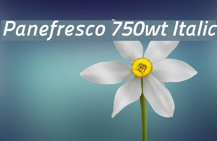Panefresco 750wt Italic フォント examples