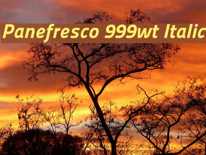 Panefresco 999wt Italic フォント examples