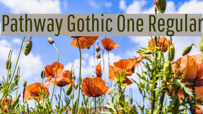 Pathway Gothic One Regular फ़ॉन्ट examples
