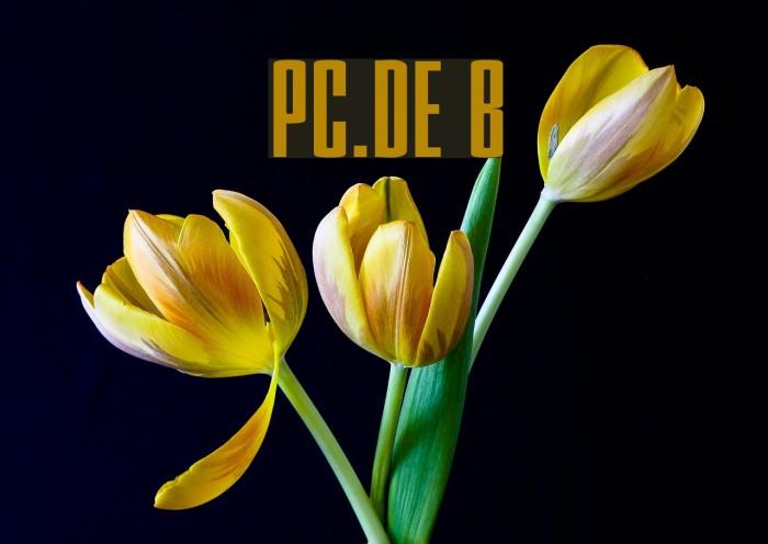 PC.DE Bold Fonte examples