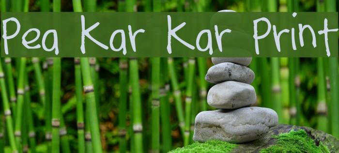 Pea Kar Kar Print Font examples