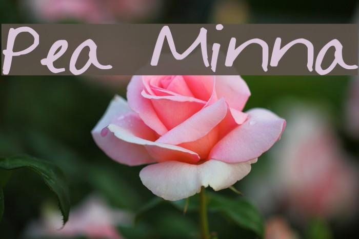 Pea Minna لخطوط تنزيل examples