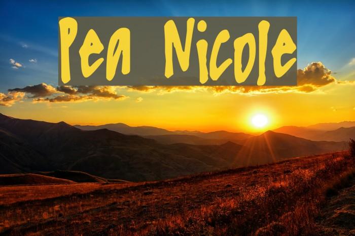Pea Nicole Font examples