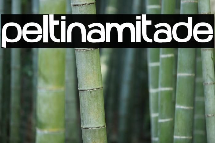 Peltinamitade Шрифта examples
