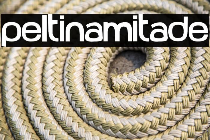 Peltinamitade Font examples