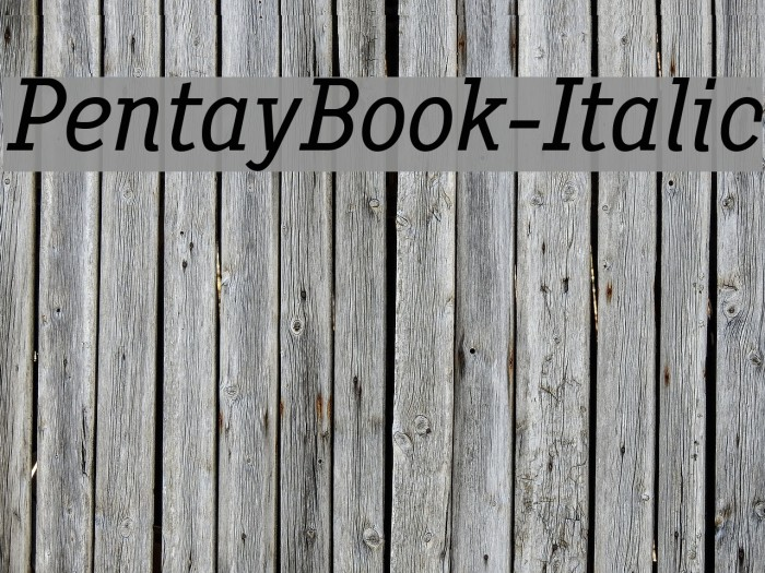PentayBook-Italic フォント examples