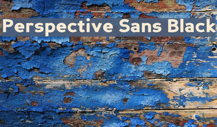 Perspective Sans Black Fonte examples