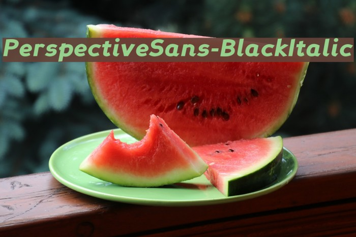 PerspectiveSans-BlackItalic Fonte examples