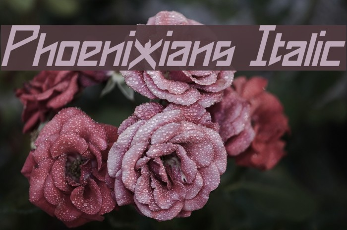 Phoenixians Italic Font examples