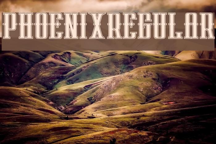phoenixregular Polices examples