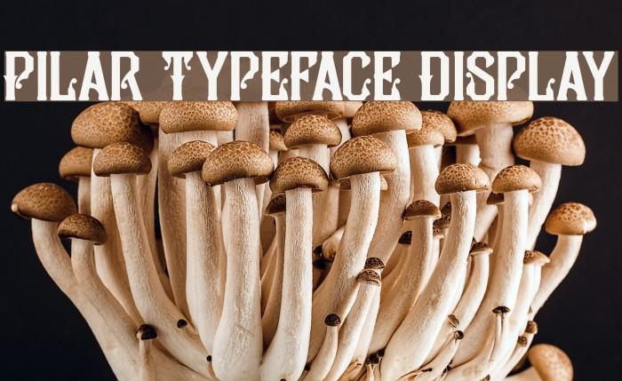 Pilar Typeface Display Fonte examples