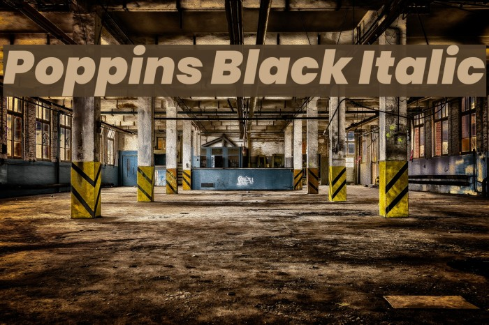 Poppins Black Italic Font examples