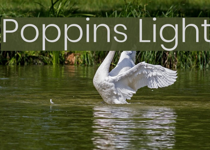 Poppins Light Font examples