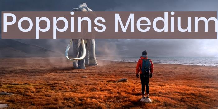 Poppins Medium Font examples