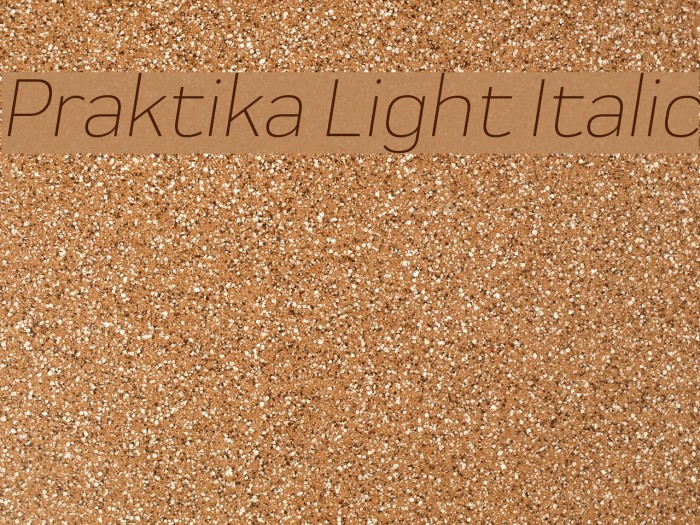Praktika Light Italic 字体 examples