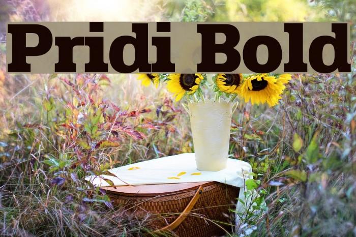 Pridi Bold Шрифта examples