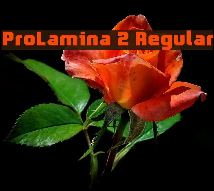ProLamina 2 Regular Fonte examples