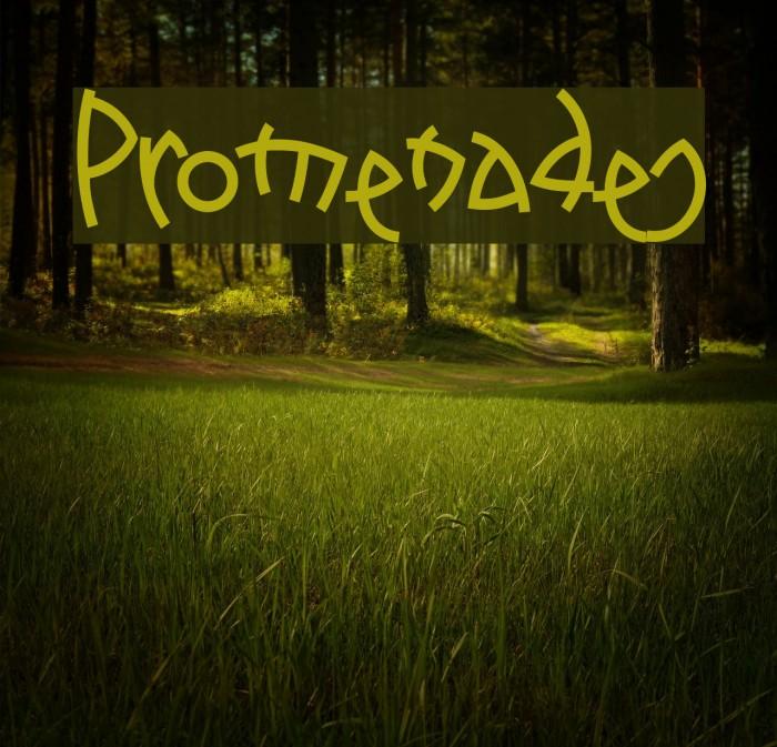 Promenades Font examples