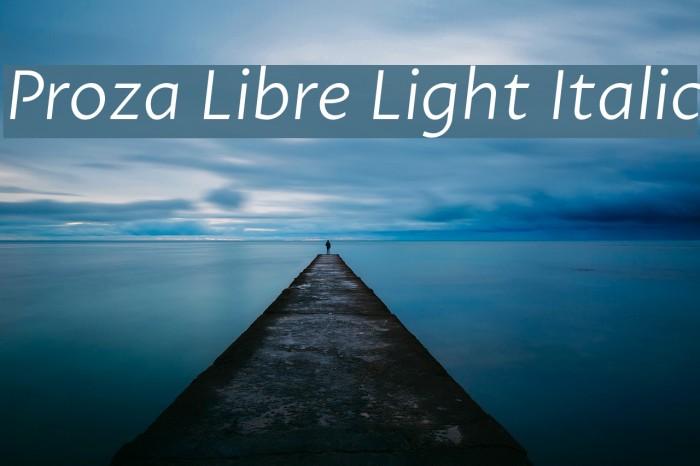 Proza Libre Light Italic Font examples