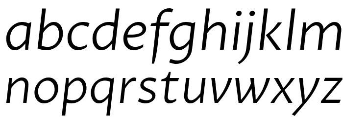 Proza Libre Light Italic Font LOWERCASE