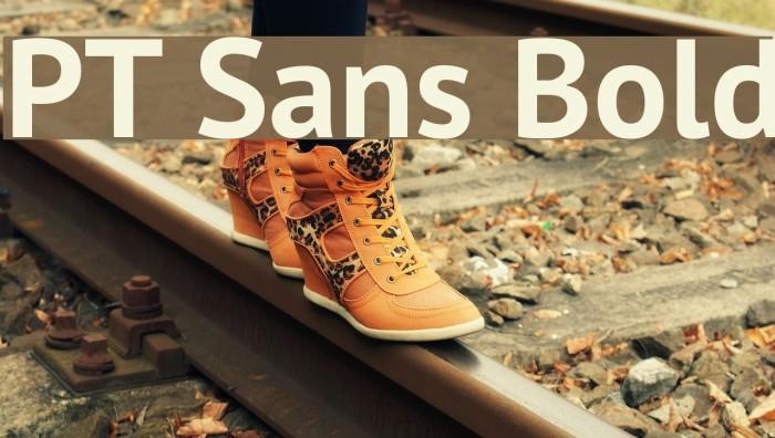 PT Sans Bold Font examples
