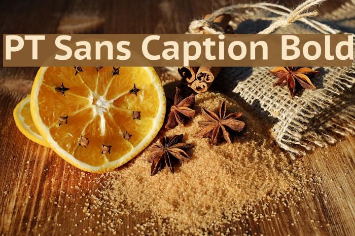 PT Sans Caption Bold フォント examples