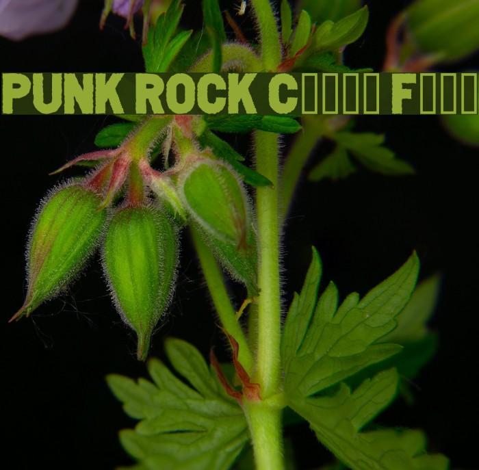 PUNK ROCK Color Fill Шрифта examples
