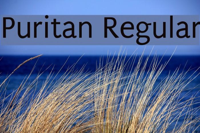 Puritan Regular Fonte examples