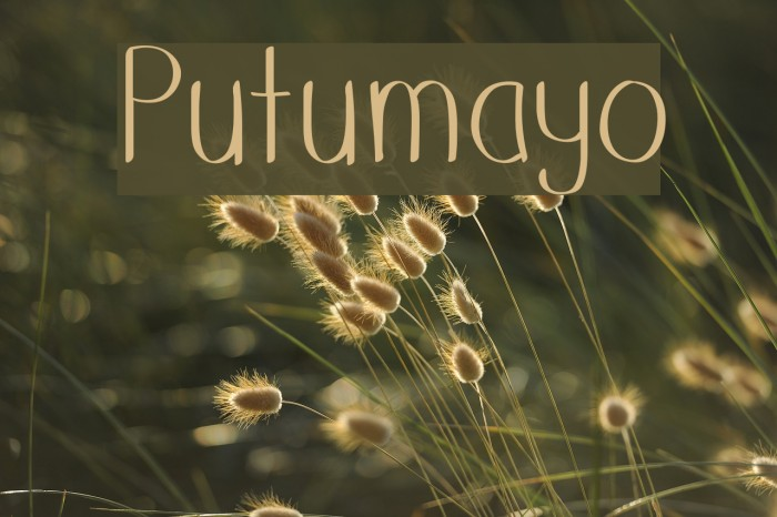Putumayo Font examples