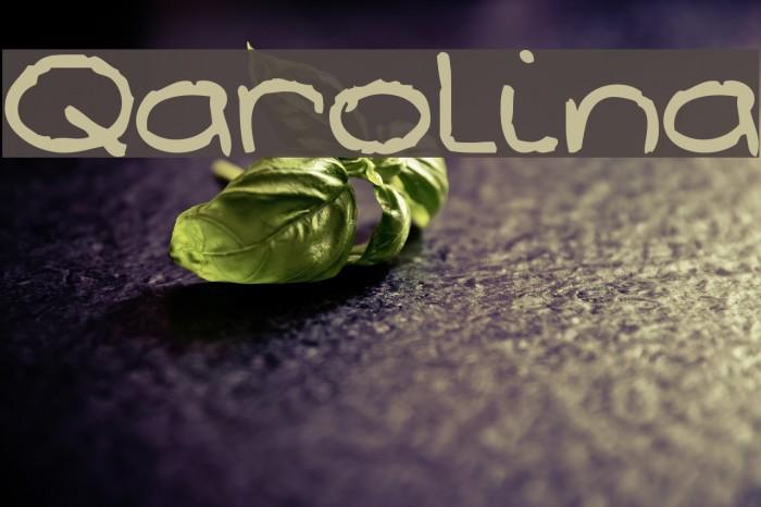 Qarolina Fonte examples