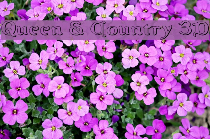 Queen & Country 3D Font examples