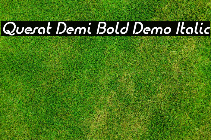 Quesat Demi Bold Demo Italic Шрифта examples