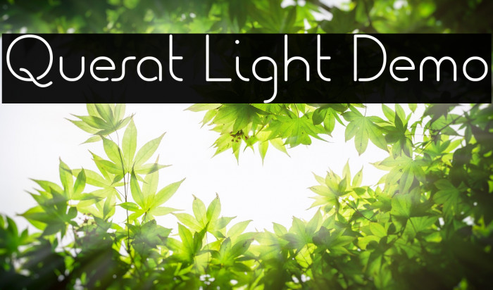 Quesat Light Demo Polices examples
