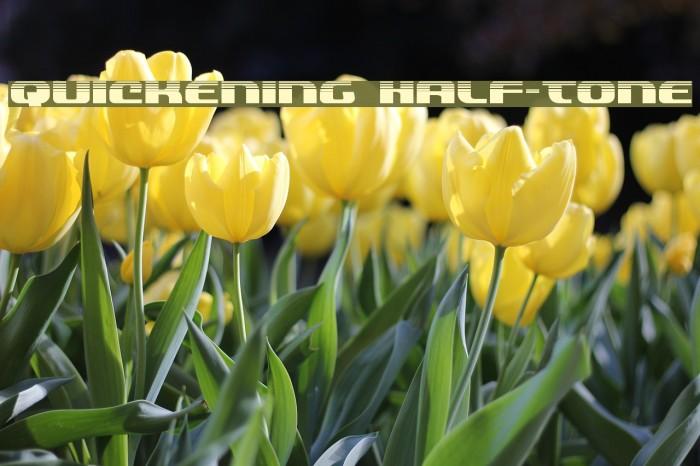 Quickening Half-Tone Font examples