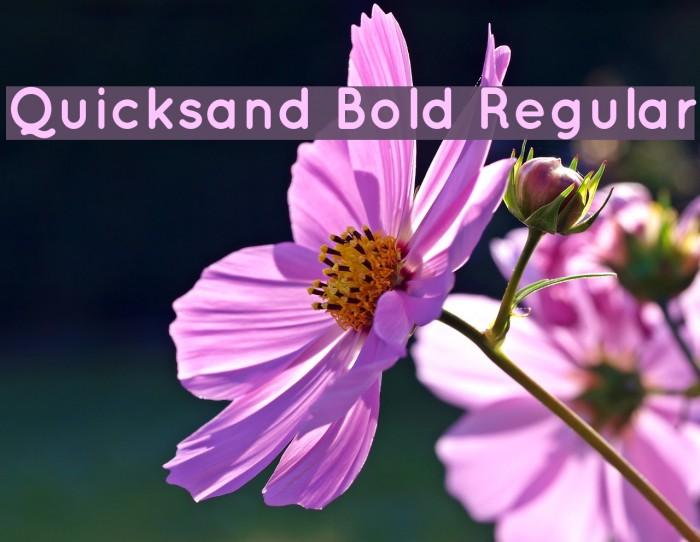 Quicksand Bold Regular Font examples
