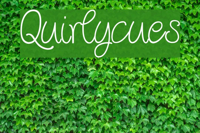 Quirlycues Шрифта examples