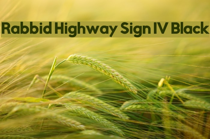Rabbid Highway Sign IV Black Font examples