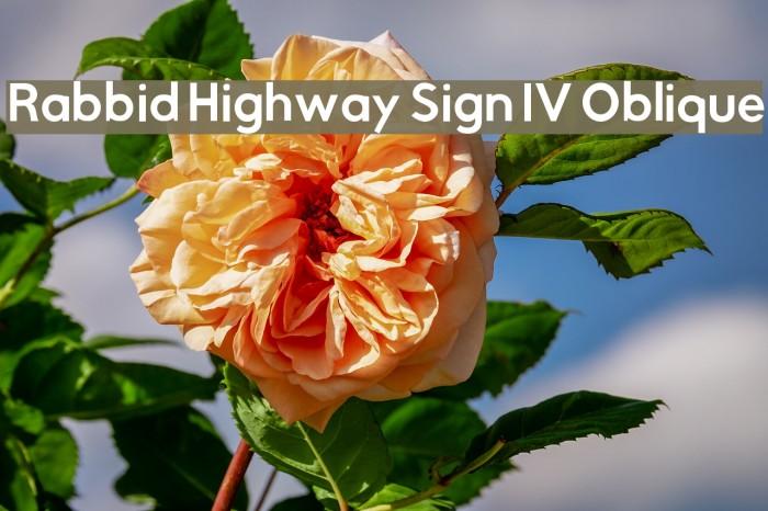 Rabbid Highway Sign IV Oblique Font examples