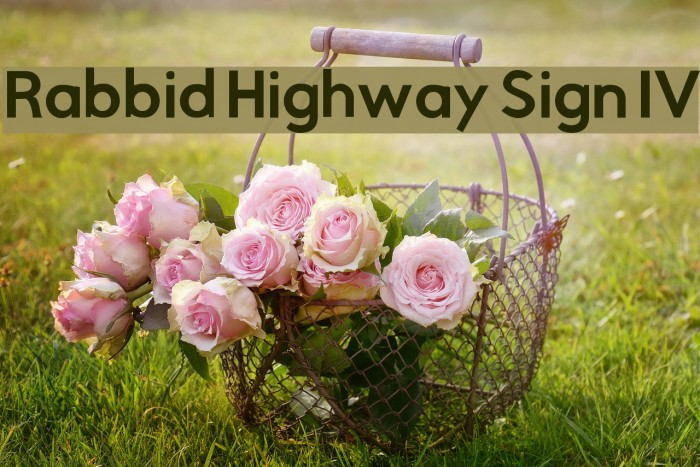 Rabbid Highway Sign IV Polices examples