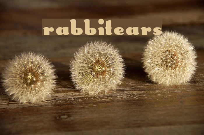 RabbitEars Font examples