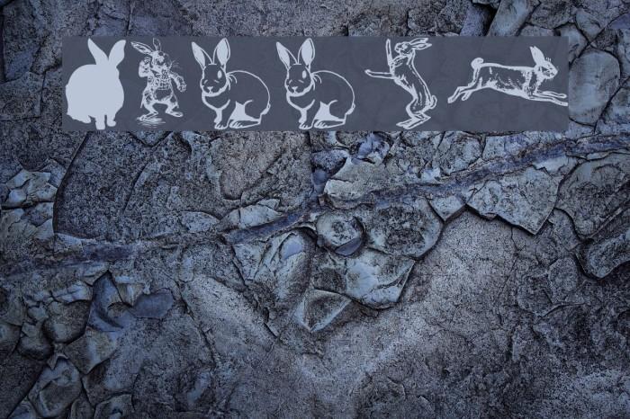 Rabbit Font examples