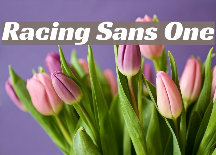 Racing Sans One Font examples