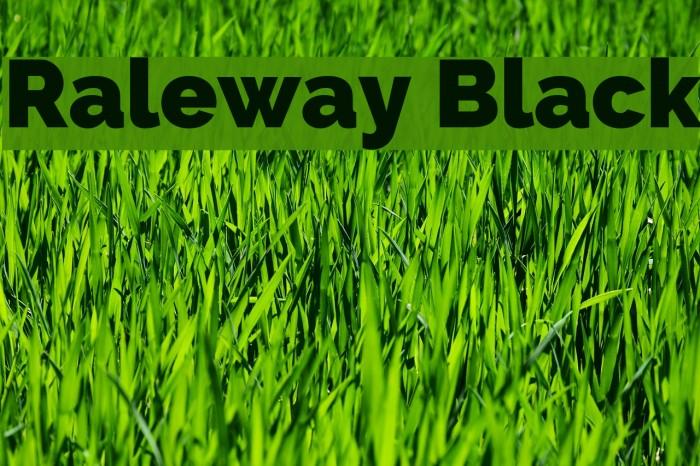 Raleway Black Font examples