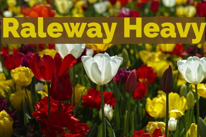 Raleway Heavy Font examples