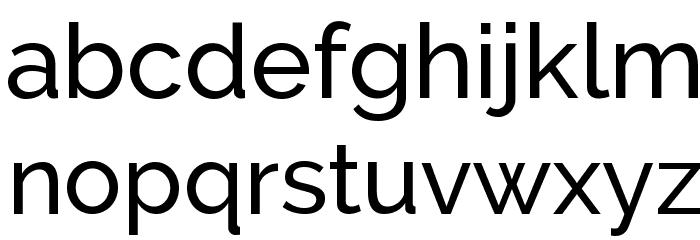 Raleway Medium Font LOWERCASE