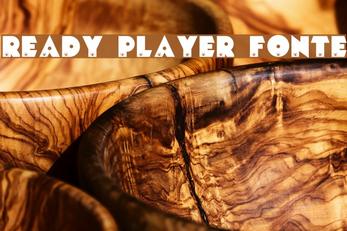 READY PLAYER FONTE フォント examples
