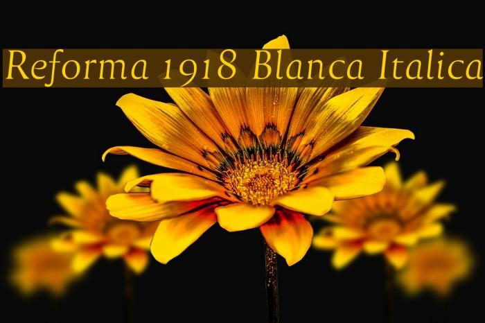 Reforma 1918 Blanca Italica Fuentes examples