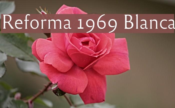 Reforma 1969 Blanca Fuentes examples