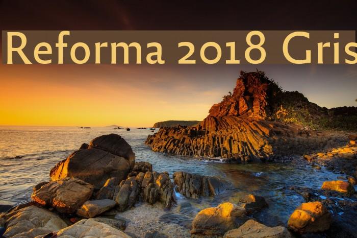 Reforma 2018 Gris Fuentes examples